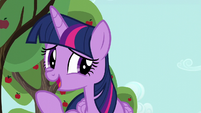 "Twilight ""really should set aside some time"" S6E10"