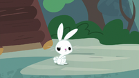 Angel Bunny looking disappointed S9E18
