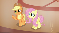 """Applejack """"you know it's the absolute truth"""" S6E20"""