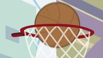 Basketball swishes into the hoop CYOE4b
