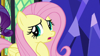 """Fluttershy """"if I don't get them fed"""" S9E26"""