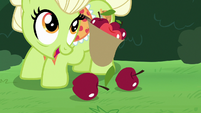 Granny Smith glances up while picking apples S7E13