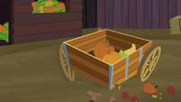 McColts' wagon with three wheels S5E23