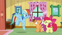 Rainbow Dash -Scootaloo belongs here!- S9E12