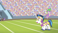 Spike jumps from Shining Armor's back S4E24