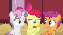 "Apple Bloom ""mysterious package"" S8E10"