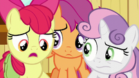 "Apple Bloom ""the book didn't really say"" S9E12"
