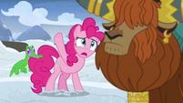 """Pinkie Pie """"all this snow?!"""" S7E11"""