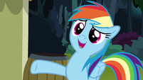 """Rainbow """"editor-in-chief of the Ponyville Chronicle"""" S7E18"""
