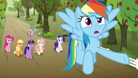 """Rainbow """"that thing knows what 'small' is"""" S9E13"""