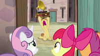 Feather Bangs serenading Sugar Belle outside her door S7E8