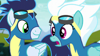 """Fleetfoot """"saved all of Equestria"""" S6E7"""