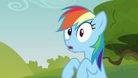 Rainbow surprised S3E03
