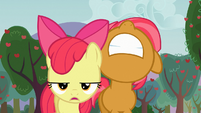 Apple Bloom and Babs frustrated S03E08