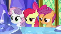 Cutie Mark Crusaders look at the Map S8E6