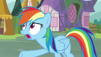 Rainbow Dash -so many other things- S8E18