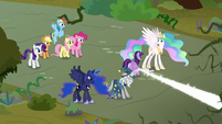 Twilight entrusting princesses and Star Swirl S9E2