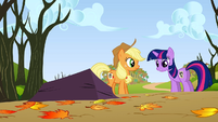 Twilight you tripped over rock S1E13