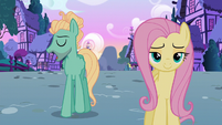 """Zephyr Breeze """"totally on my to-do list"""" S6E11"""