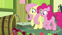 Apples spill in front of Fluttershy and Pinkie S8E12