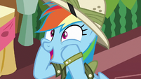 Rainbow Dash --so excited!-- S6E13
