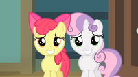 Apple Bloom and Sweetie Belle putting on a grin S4E05