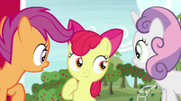 Cutie Mark Crusaders have different theories S7E8