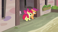 Cutie Mark Crusaders looking for Big McIntosh S7E8