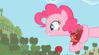 Pinkie Pie I want S2E13