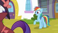 "Rainbow Dash ""under Canterlot Castle"" S9E4"