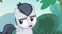 Rumble -I won't be getting my cutie mark- S7E21