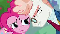 S05E24 Svengallop patrzy z bliska na Pinkie Pie