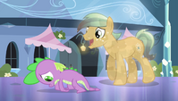 Crystal Pony asks Spike for his autograph S4E24