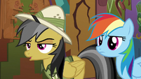 "Daring Do ""actually, no"" S6E13"