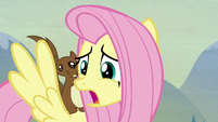 """Fluttershy """"you see?"""" S5E23"""
