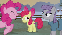 Pinkie declares Bloom and Maud team two S5E20