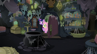 Twilight and Fluttershy enter Meadowbrook's house S7E20