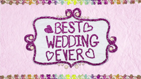 """Best Wedding Ever"" text in felt BFHHS1"