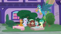 Gallus meets his friends in the fountain square S8E2