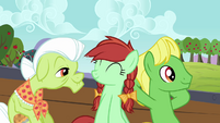 Granny Smith and relatives in the cart S3E8