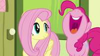 "Pinkie Pie ""you're friends again!"" S8E12"