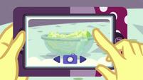Potato salad on Vignette's phone EGROF