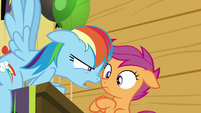 """Rainbow Dash """"I could ask you the same"""" S8E20"""