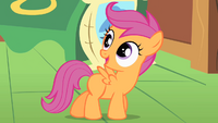 Scootaloo .png
