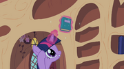 Twilight Sparkle reshelf books 5 S02E10.png