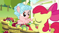 "Apple Bloom ""friendship means pitchin' in"" S8E12"