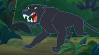 Black jaguar jumps out of the bushes S9E21