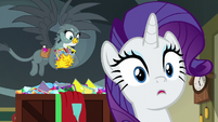 Rarity surprised with Gabby behind her S9E19