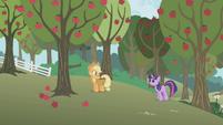 Twilight -Applejack, can we talk-- S1E04