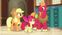 "Apple Bloom ""talk to both our grandparents"" S7E13"